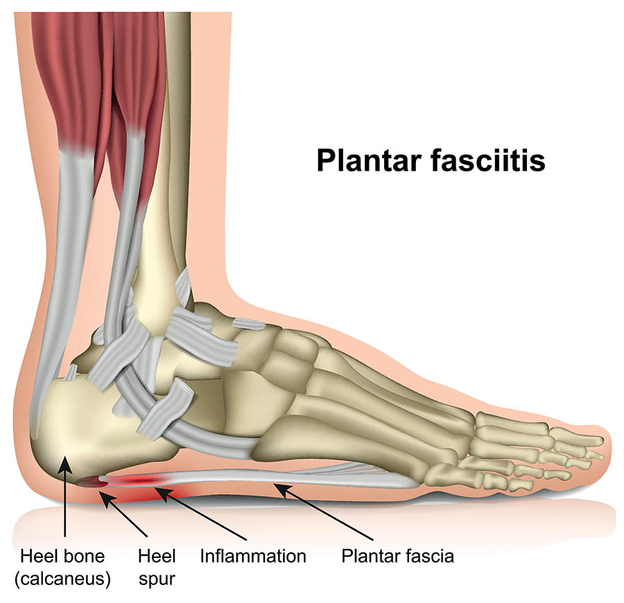 Dr7 Physiotherapy Podiatry